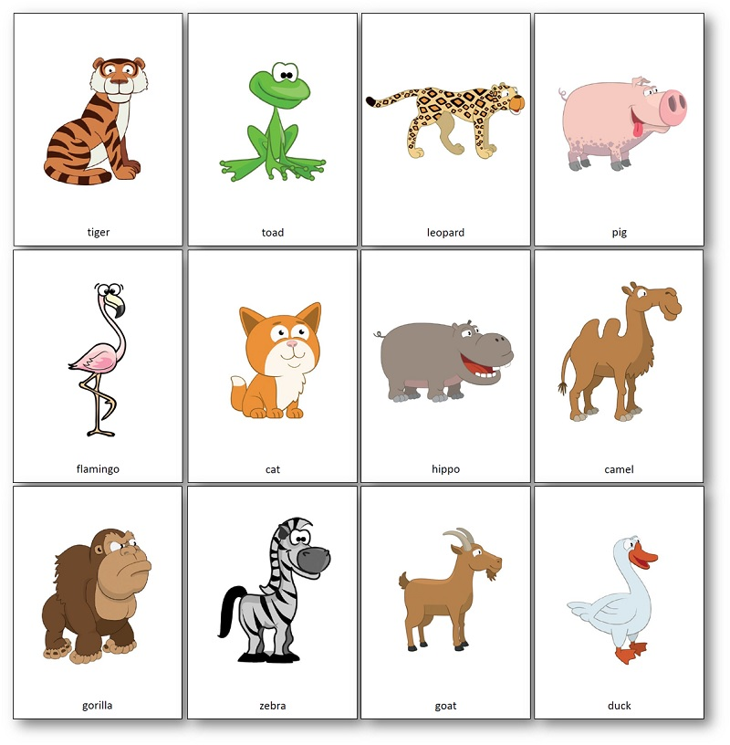 flashcards Hippo Has a Hat, Hippo Has a Hat images