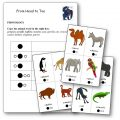 Phonologie From Head to Toe Prononciation noms des animaux