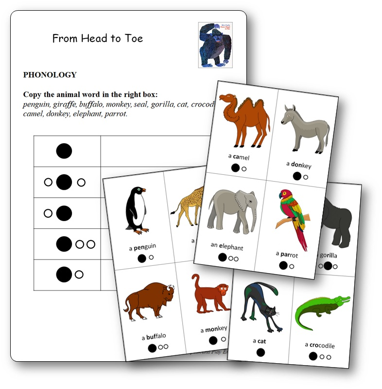 Phonologie From Head to Toe Prononciation noms des animaux, From Head to Toe séquence